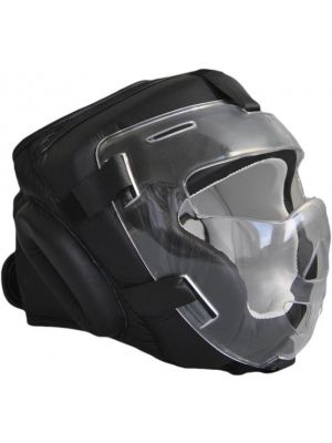 Phoenix Glass Visor head protector